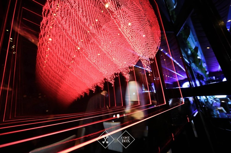 Party at Cosy Box VIP nightclub in Cannes