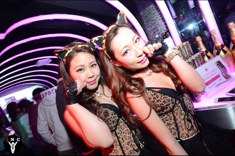Kitsune nightclub Tokyo sexy girls in cat costumes