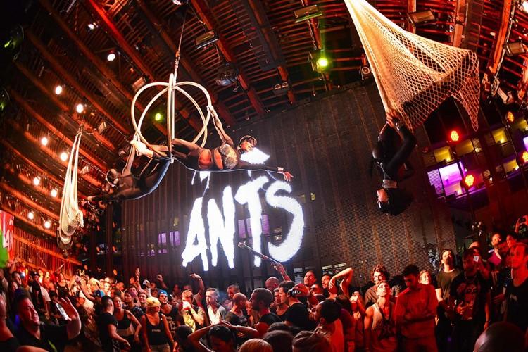 Ushuaia nightclub Ibiza ANTS